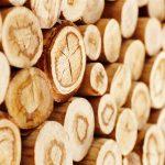 Holzboden 7